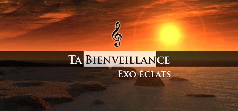 Ta bienveillance – Exo Eclats
