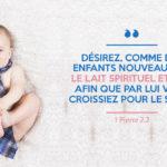 Désirez, comme des enfants nouveau-nés, le lait spirituel et pur