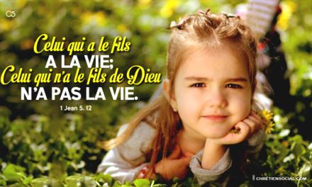 Celui qui a le Fils a la vie; celui qui n'a pas le Fils de Dieu n'a pas la vie